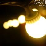 Cheshire Festoon Lighting